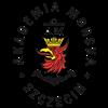 Морская Академия Щецин в Польше